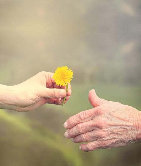 LC Psicólogos Apoyo a cuidadores